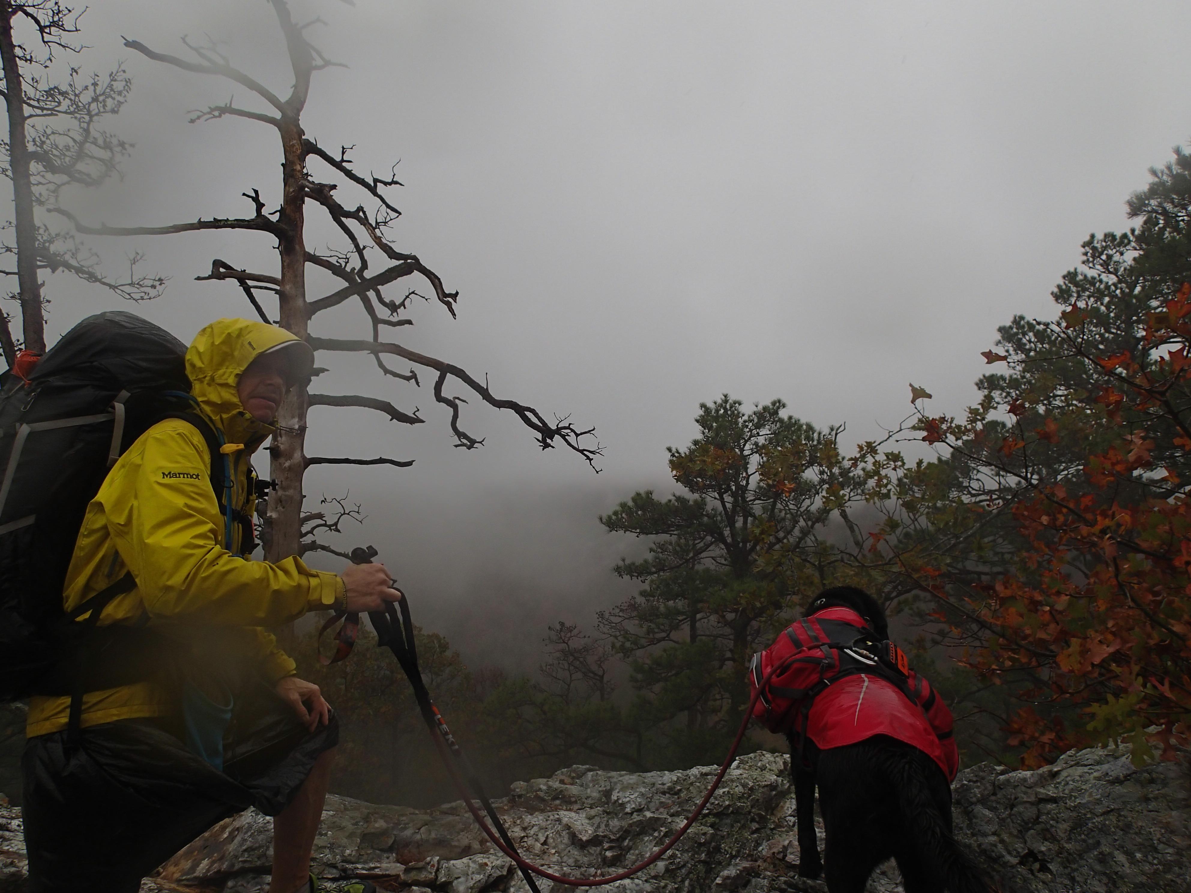 TrevorThomas hiking with dog