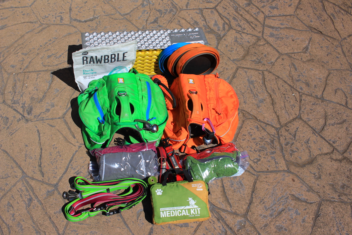 gear to take for dogs on backpacking trip