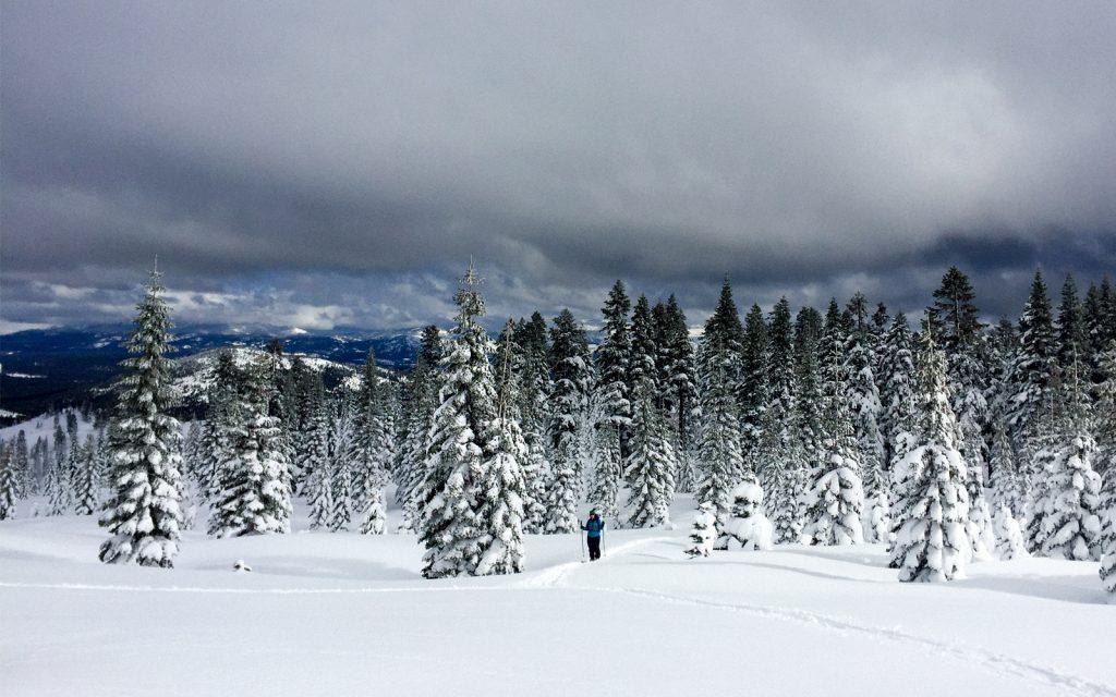 trekking in tehe snow