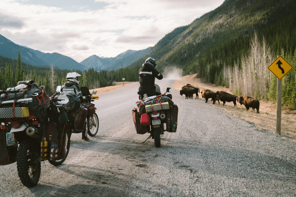 pan american trail