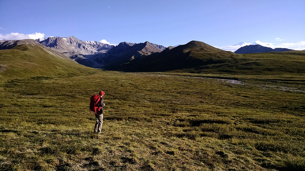 Denali-National-Park-backcountry_Edit_Conservationist