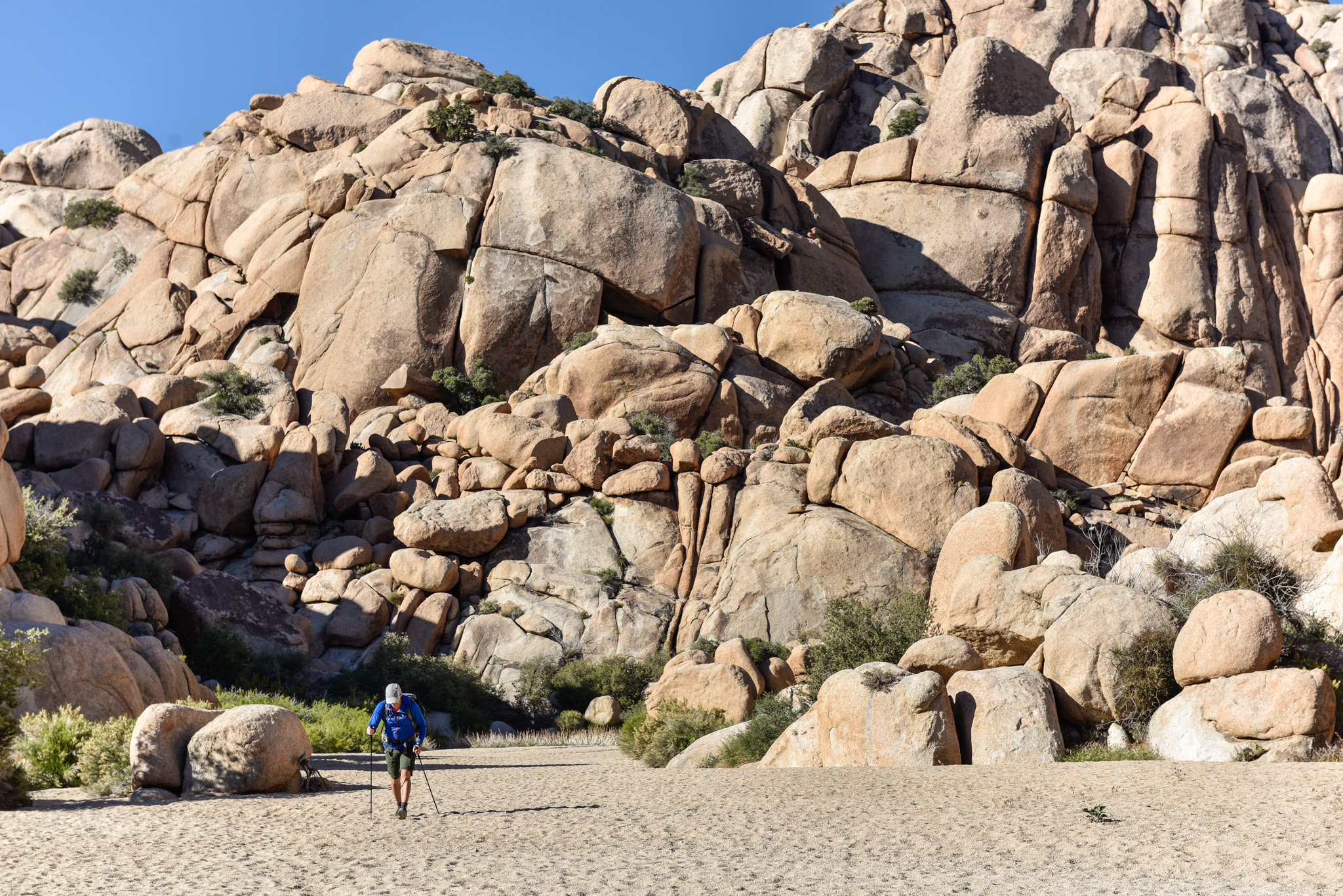 Joshua Tree solo hike