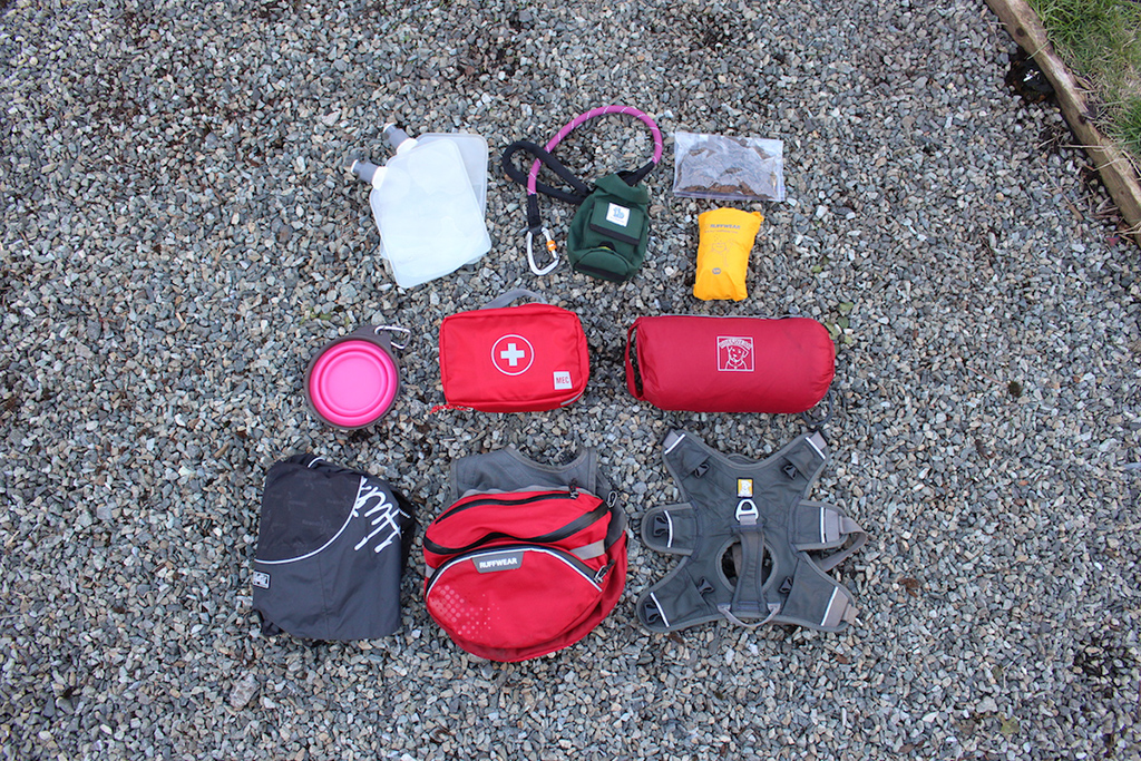 dog backpacking gear