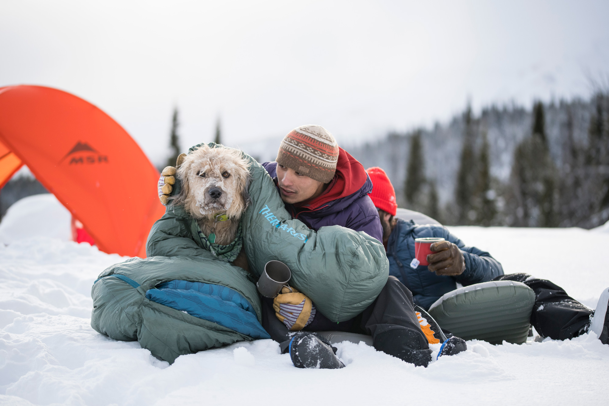 snow camping with dog