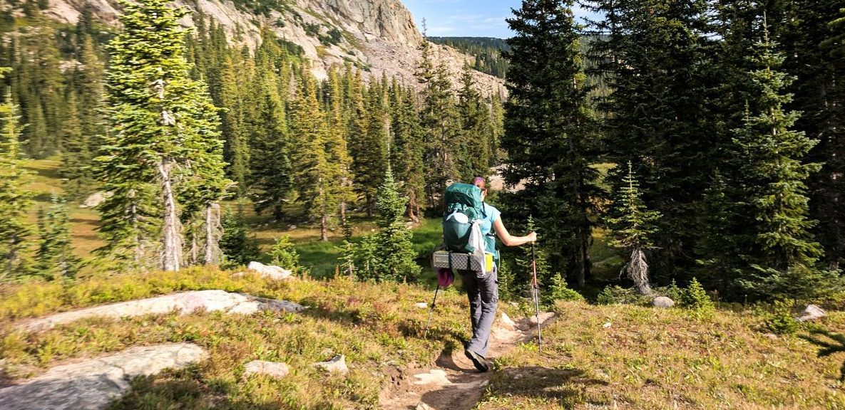 backpacking with trekking poles