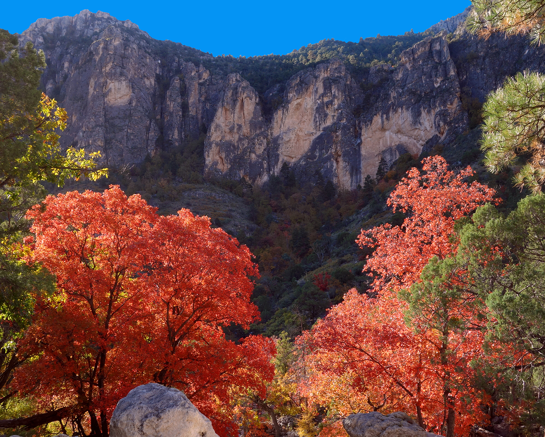 Guadalupe Mountains National Park in Texas