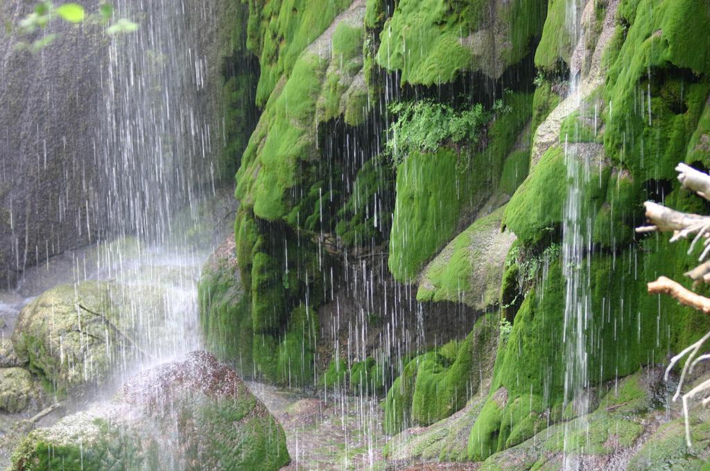 Colorado Bend State Park_Base_of_Gorman_Fall_like_Raining