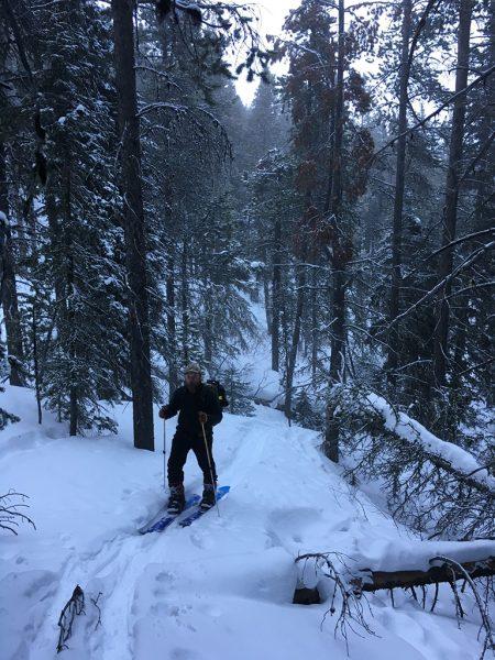 ski touring in montana
