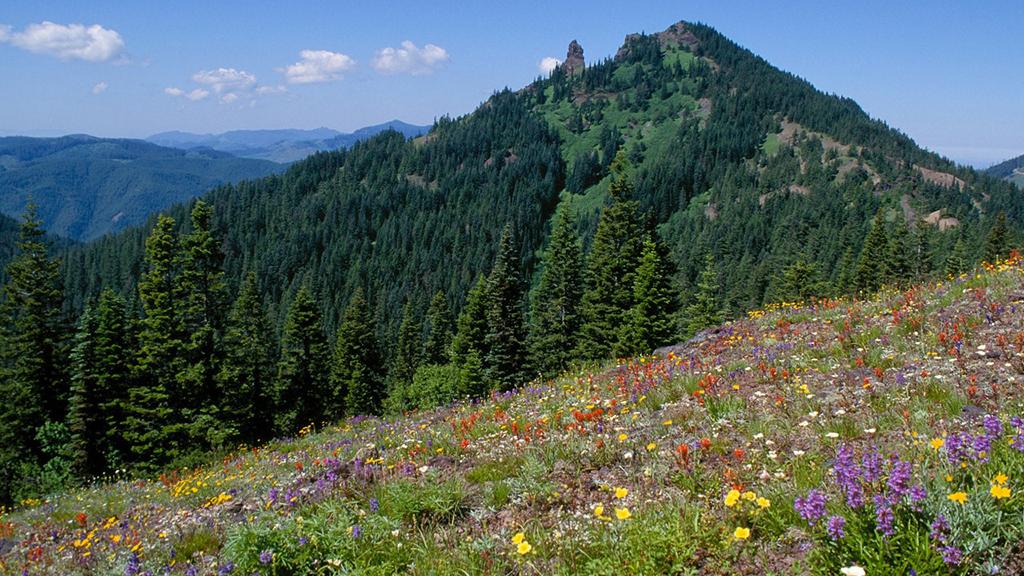 Cone Peak Loop-Oregon